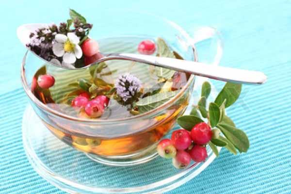 Бизнес на заготовке и продаже лекарственных растений