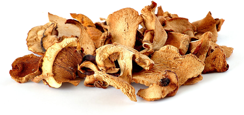 Как и сколько можно заработать на заготовке грибов